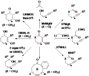 Phản ứng tách phân mảnh</h1>